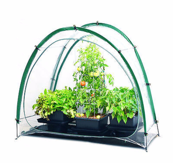 Culti Cave Mini Greenhouse - YourGardenStop
