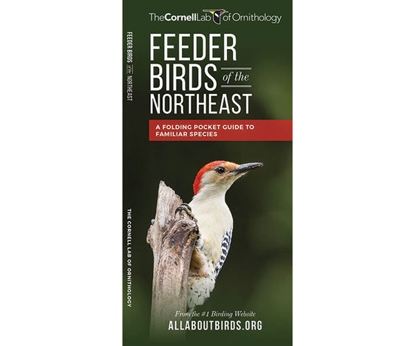 Feeder Birds of the Northeast US by Cornell Lab of Ornithology - YourGardenStop