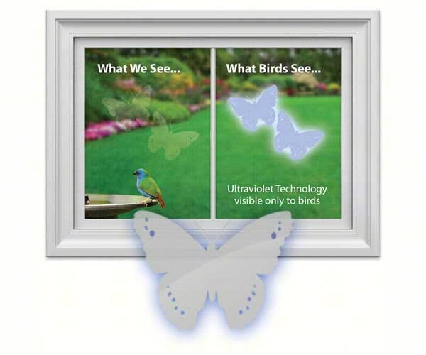 Butterfly Decal (4 per package) by Window Alert - YourGardenStop