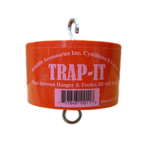 Trap-It-Ant Trap