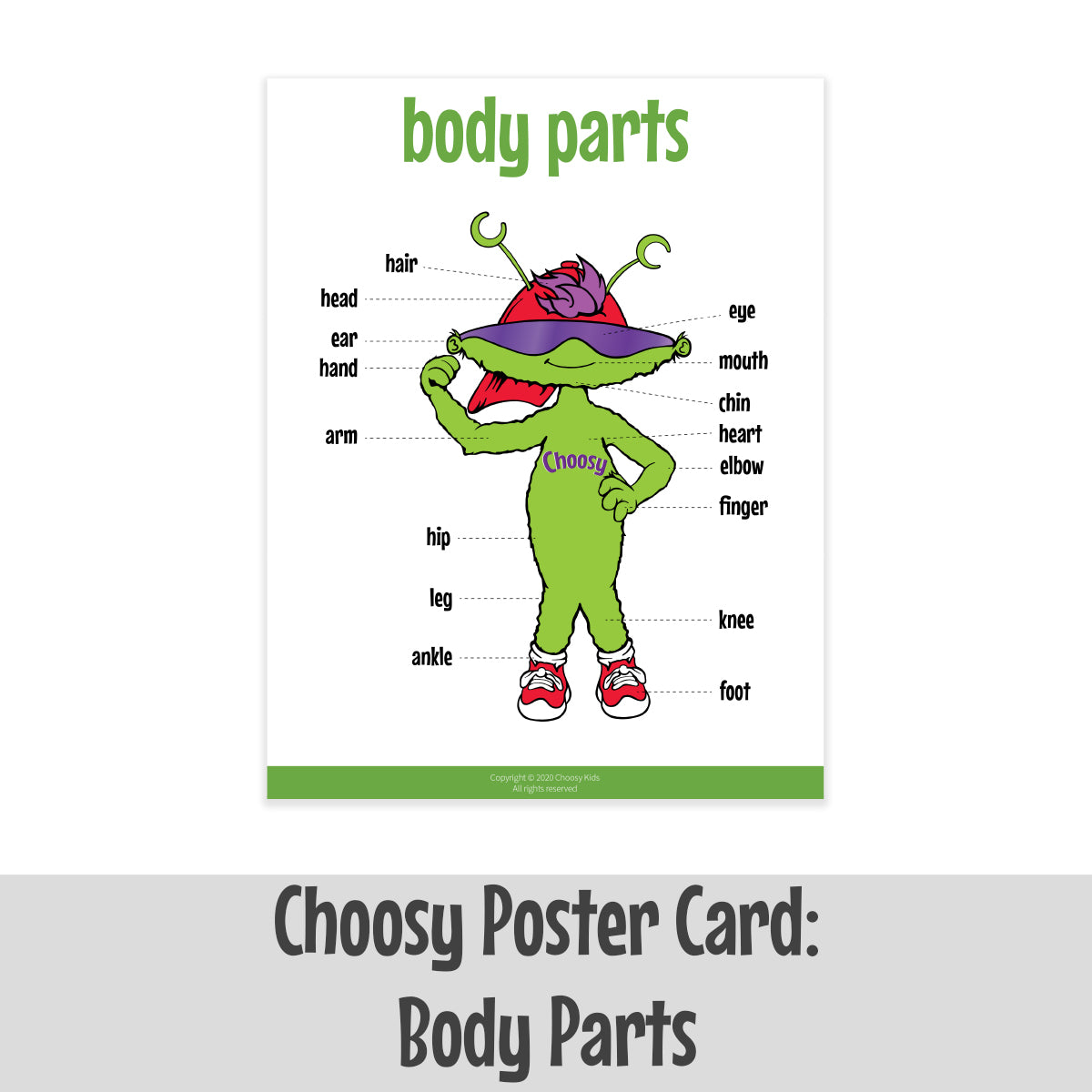 Choosy Poster Card: Body Parts