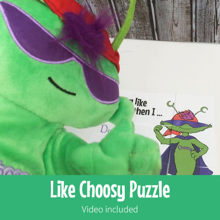 Like Choosy Puzzle
