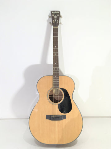 Blueridge BR-40T (used)