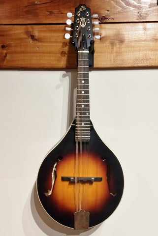 The Loar LM170-VS mandolin used