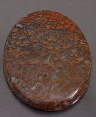 Dinosaur-Bone-Fossilized-Cabochon|Rock-N-Gem-Jewelry