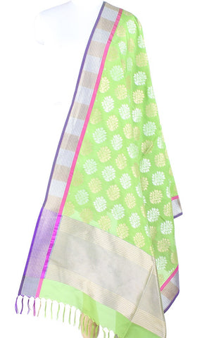 Green Banarasi Silk Dupatta with artistic flower plant motifs in dual zari PCPBD01SG14 (1) Main