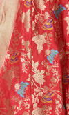 Red Katan Silk Hanwoven Banarasi Dupatta with flower and butterfly jaal PCRVDKS03BY01 (2) Close up