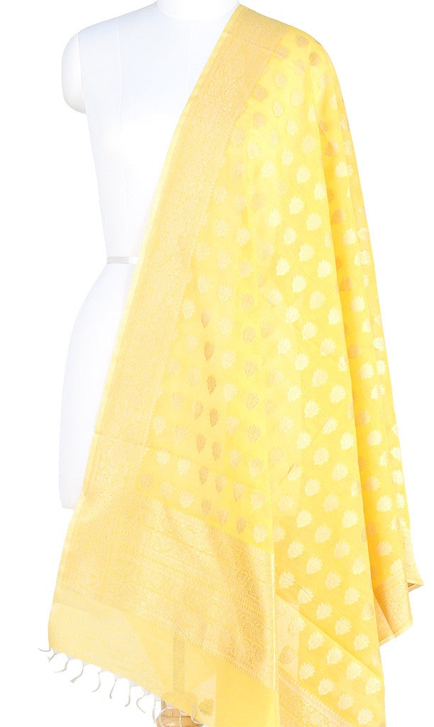 Yellow Silk Cotton Banarasi Dupatta with lotus flower motifs  PCPBD02SC04 (1) Main