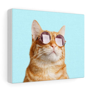 Cat is Alway's Right Canvas Gallery Wraps Wall Art