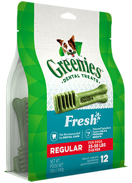 GREENIES: Fresh Mint Regular 340g