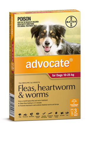 Advocate for Dogs 10-25kg Red.