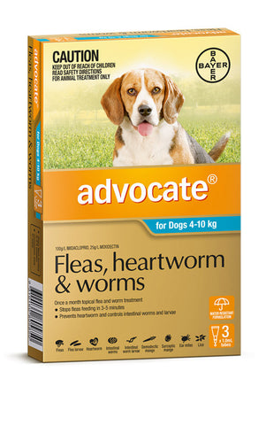 Advocate for Dogs 4-10kg Aqua.