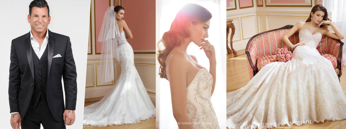 David Tutera for Mon Cheri Bridal Gowns Wedding Dresses Chattanooga Hixson Shops Boutiques Tennessee TN Georgia GA MSRP Lowest Prices Sale Discount A-Line Fit-And-Flare Mermaid Sheath ball trumpet Empire Sweetheart illusion strapless halter v-neck