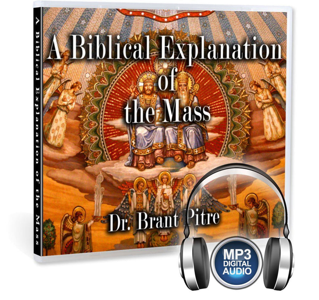 Understand the parts of the Mass Digital Video MP3