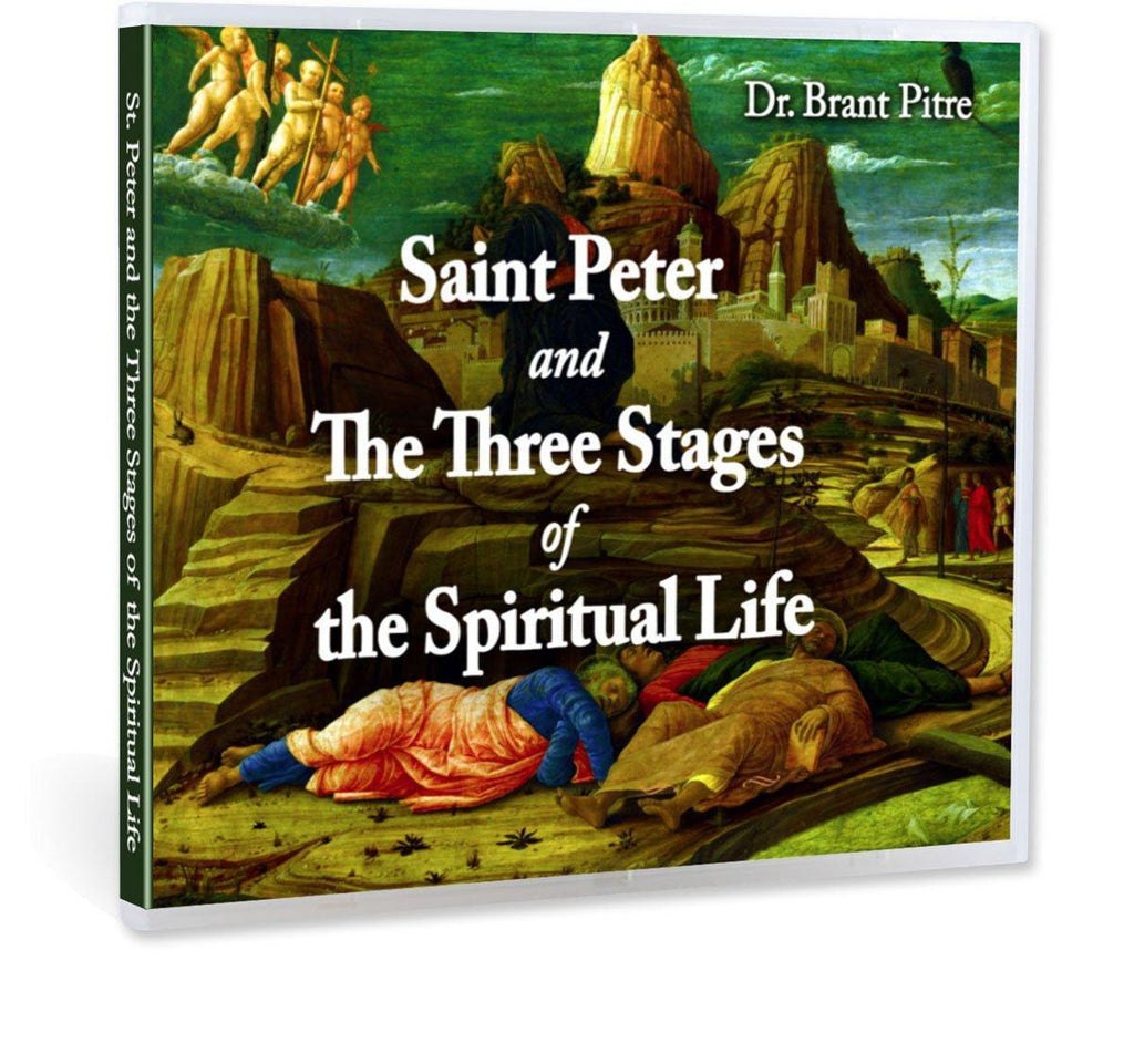 Learn what the three stages of the spiritual life are and how the Bible shows Peter going through each one in this impressive Bible study with Dr. Brant Pitre on CD.