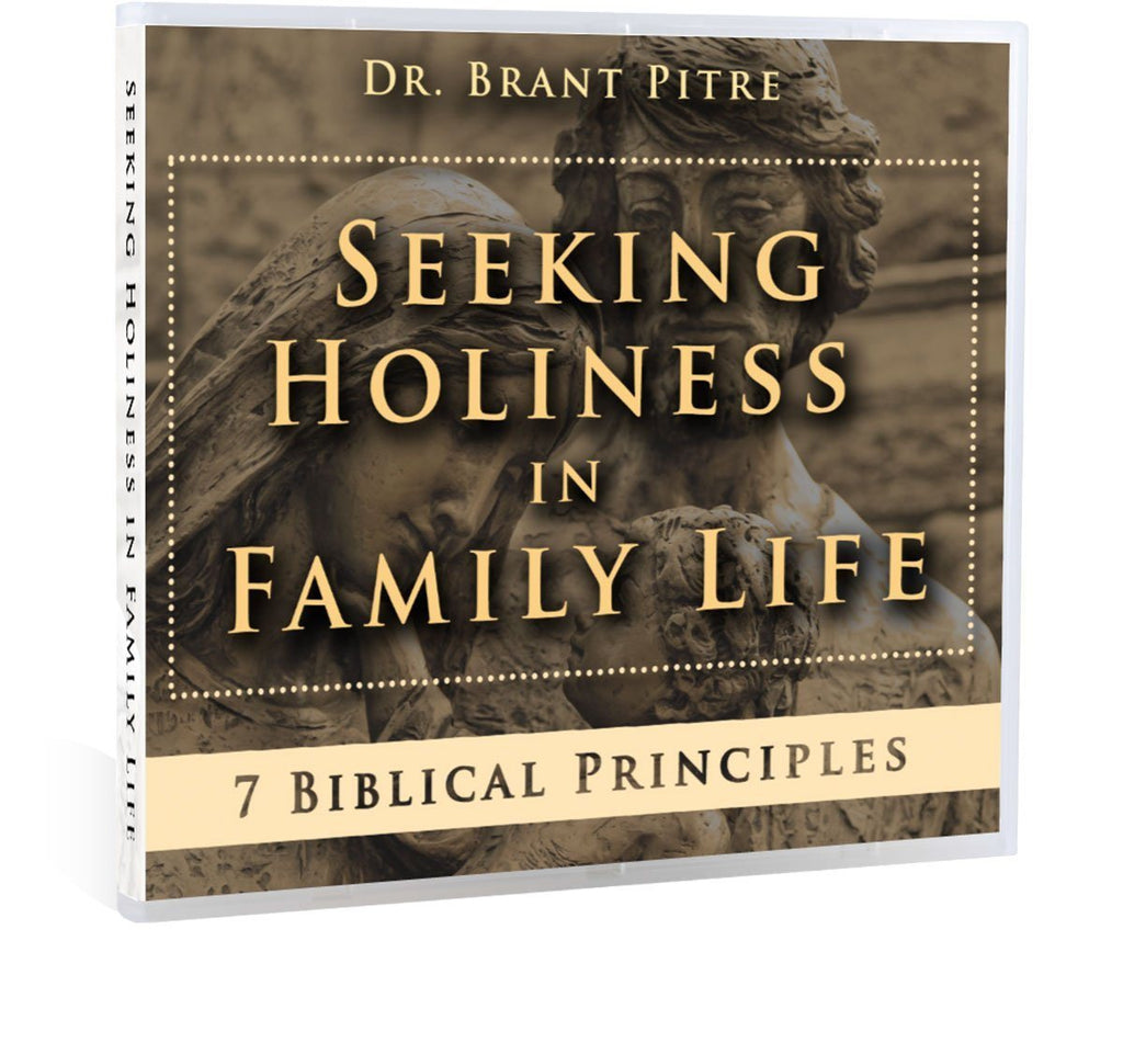 Seeking Holiness in Family Life CD