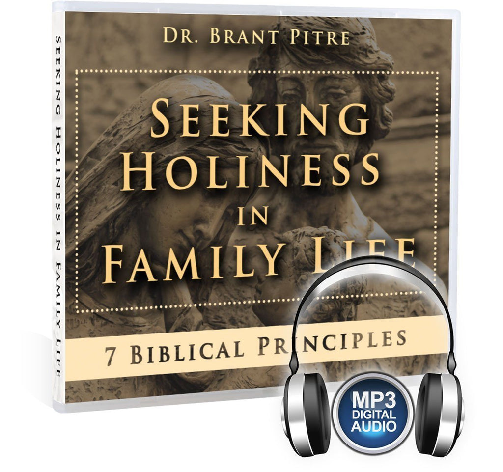 Seeking Holiness in Family Life MP3