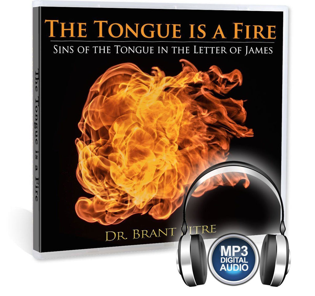 Learn about the sins of the tongue in this Bible study from the Book of James: Calumny, lying, coarse jokes, slander, detraction, and rash judgment (MP3).