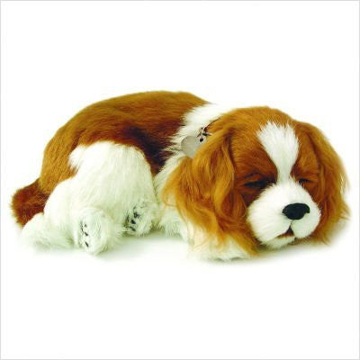 Cavalier King Charles Puppy - Funzalo Toys