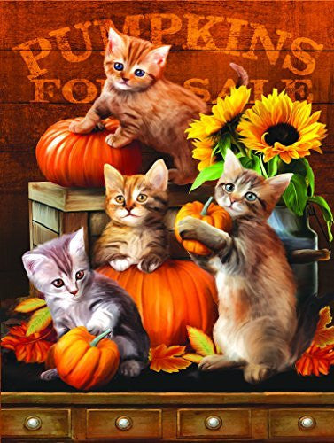 Autumn Kitties - 300 Piece Jigsaw Puzzle By SunsOut - Funzalo Toys