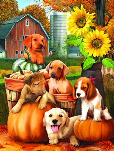 Autumn Puppies - 300 Piece Jigsaw Puzzle By SunsOut - Funzalo Toys