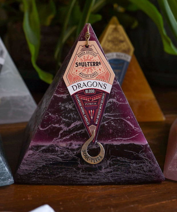 DRAGONS BLOOD <br>focus + insight