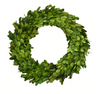 "10"" Boxwood Wreath"