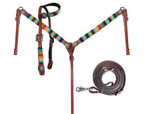 Rainbow Beaded Headstall Set