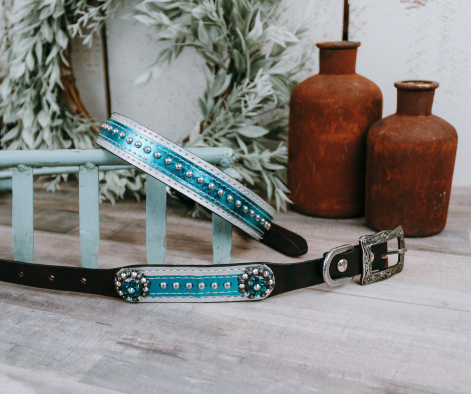 small medium and large blue and silver studded dog collar with brown leather strap and designer buckle