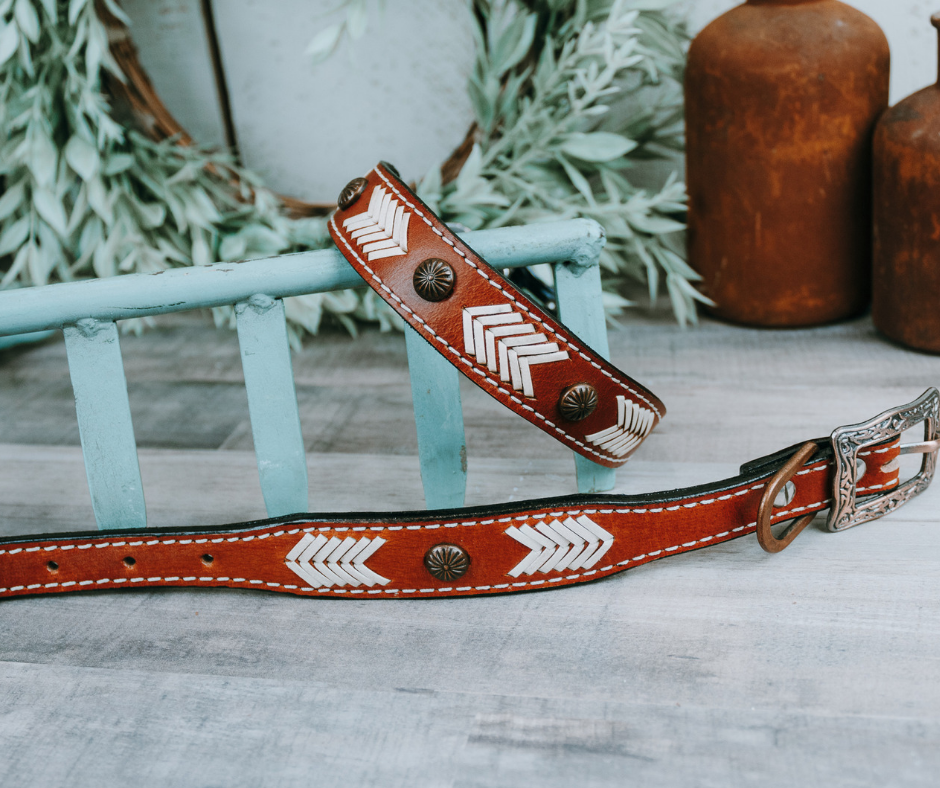 small medium and large brown concho stitched dog collar with brown leather strap and designer buckle