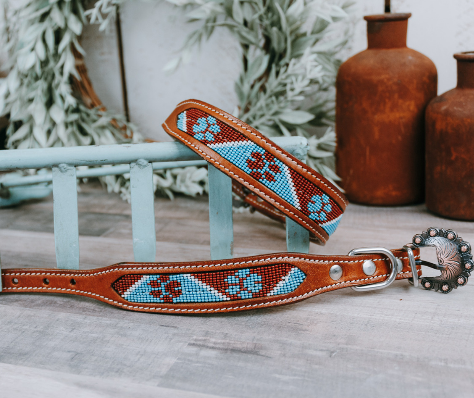 small medium and large sky blue and brown paw print beaded dog collar with brown leather strap and designer buckle