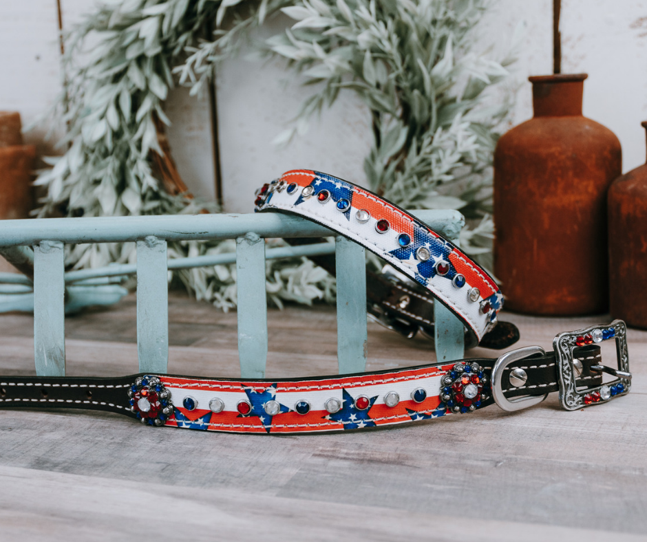 small medium and large red white and blue stars and stripes dog collar with brown leather strap and designer buckle
