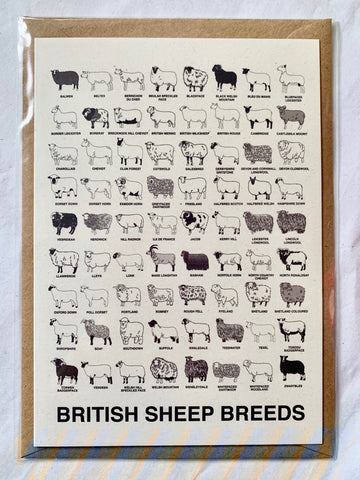 British Sheep Breeds notecard (A6)