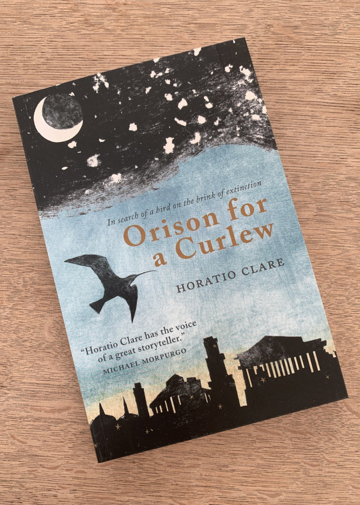Orison for a Curlew by Horatio Clare