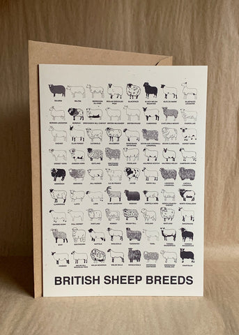 British Sheep Breeds notecards