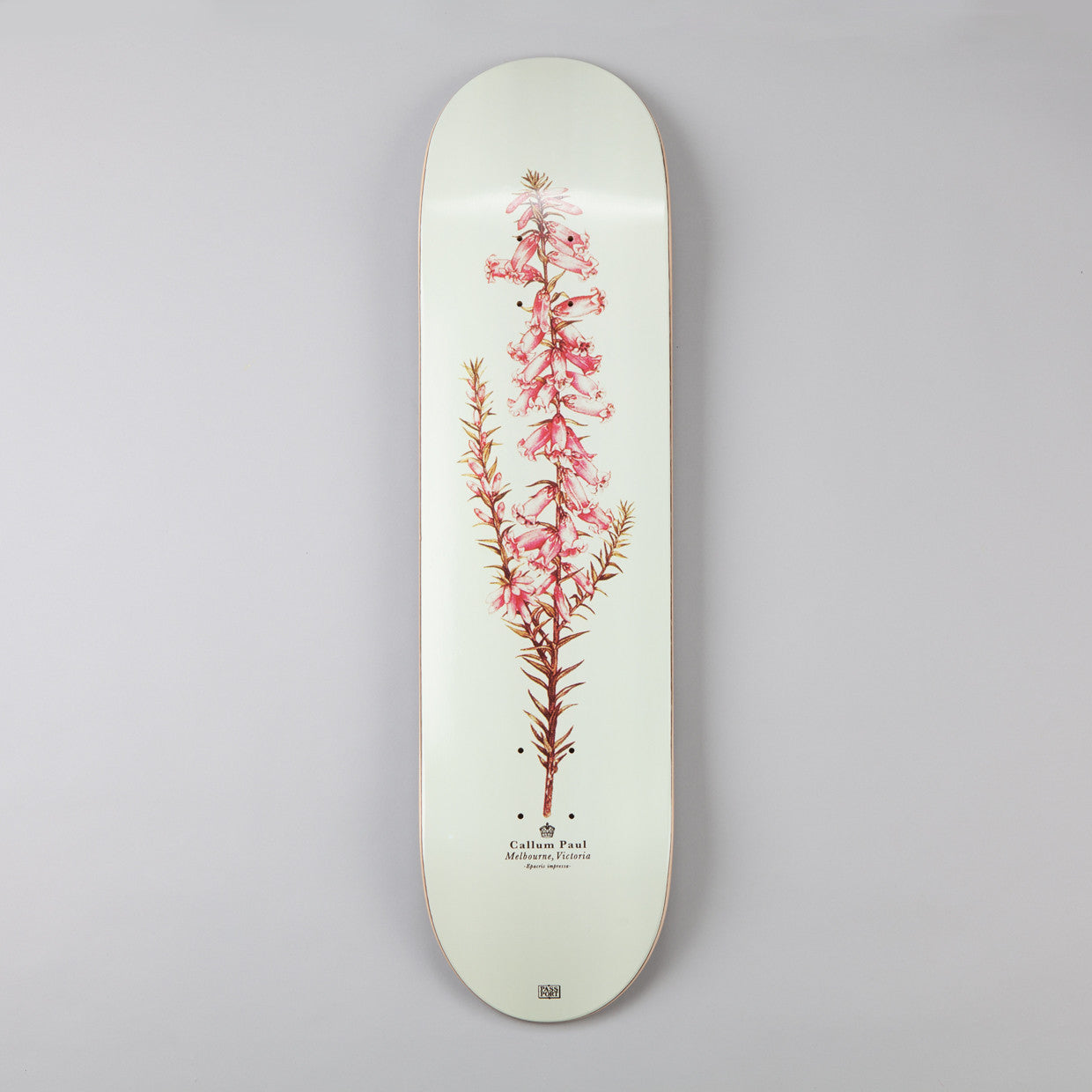 Passport Callum Paul Pink Heath Deck 8.125""