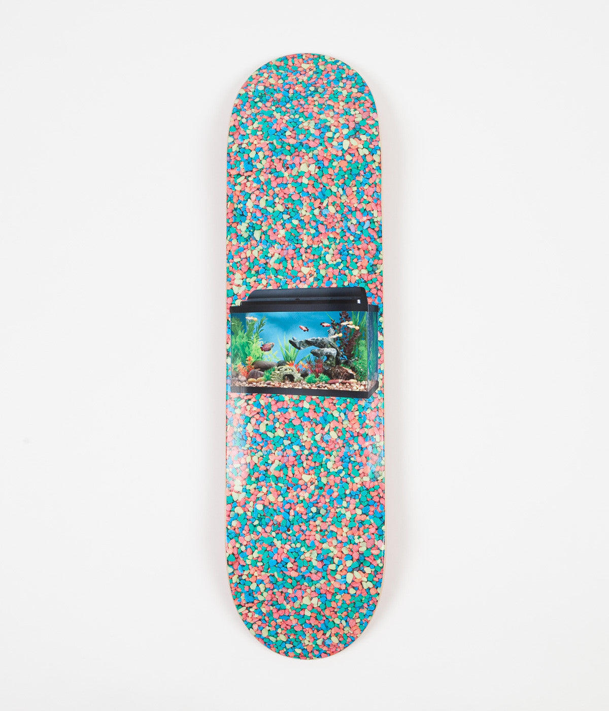 "Alltimers Aquarium Deck - 8.1"" - Sprinkles"
