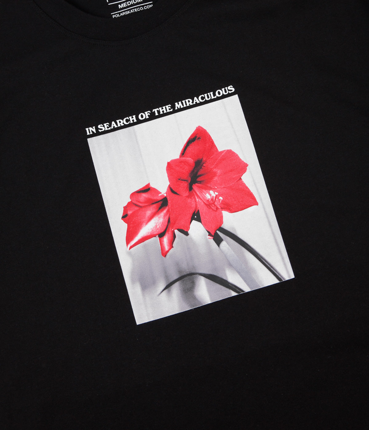 Polar In Search of the Miraculous T-Shirt - Black