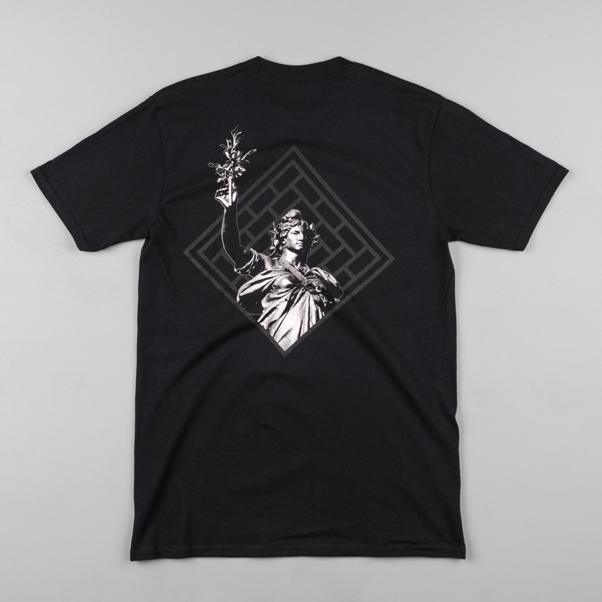 The National Skateboard Co Republique T-Shirt - Black