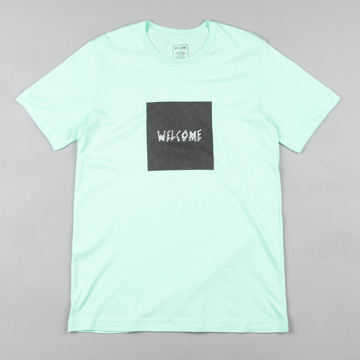 Welcome Skateboards Screenshot T-Shirt - Mint / Black