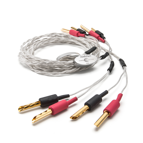 Astell&Kern Speaker Cable - DEF21