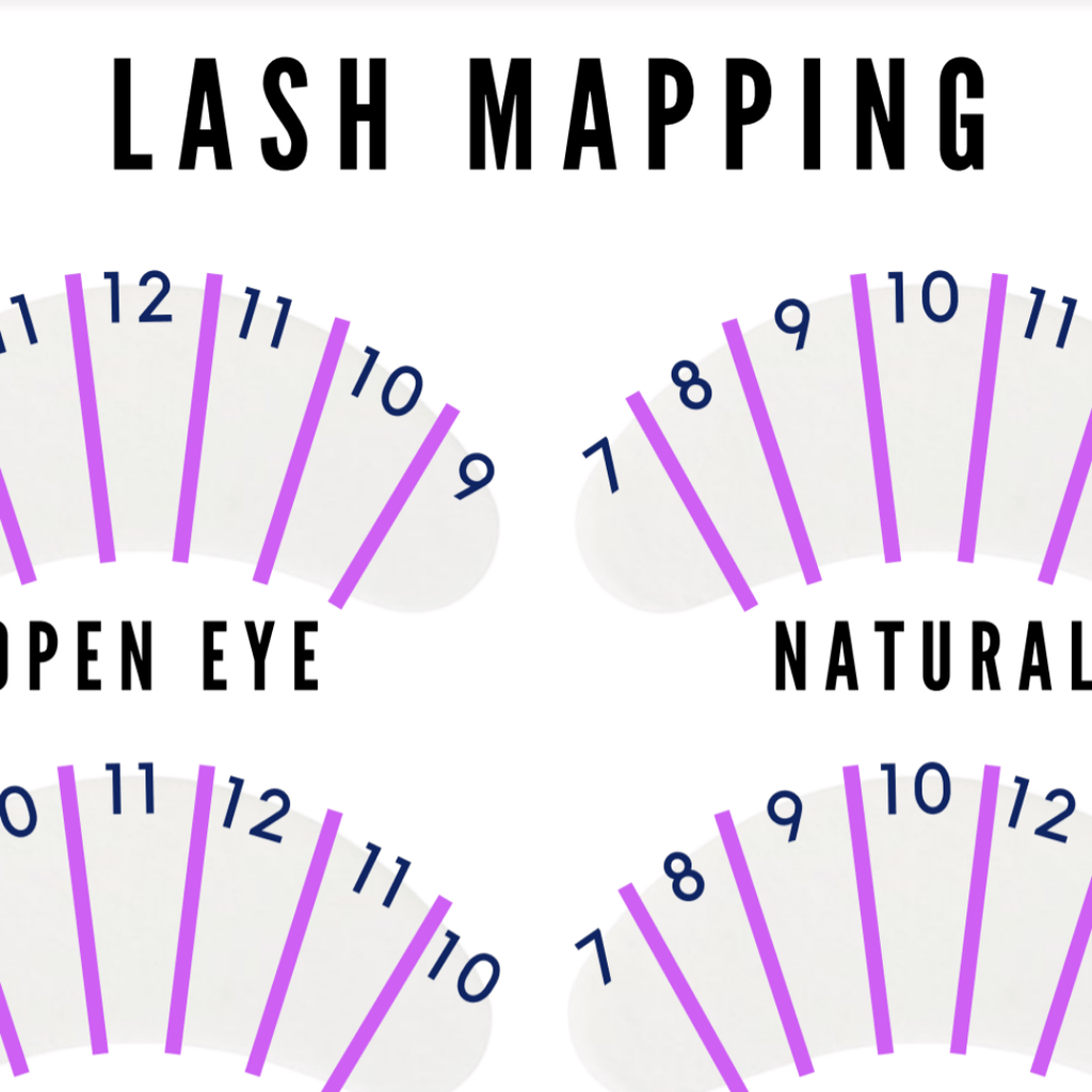 Lash Map Guide (FREE if brought with other products)