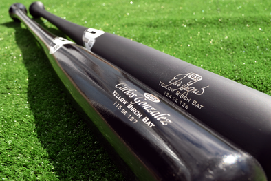 B45 Baseball Trophy Bat Special Edition Trophy Bat for William Alain