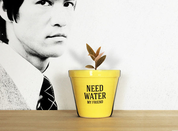 Maceta Need water my friend | Plant pot
