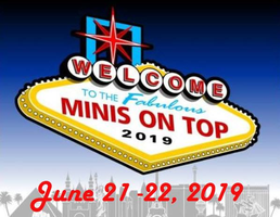 MINIs On Top LLC