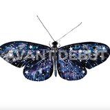 Avant Debut | Butterfly by Nika Akin Digital Art and Art Prints