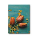 Olivia St. Claire Print Products Orange Tulips