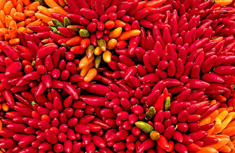 chilies, mexican chocolate