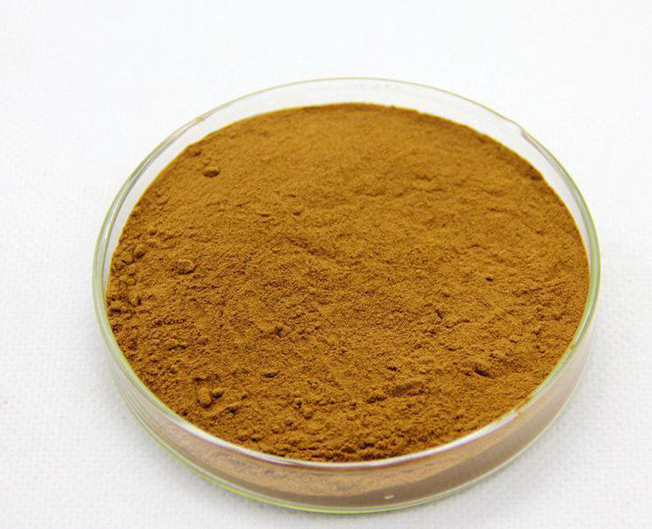 Buy Dendrobium extract at Wholesalehealthmarket.com