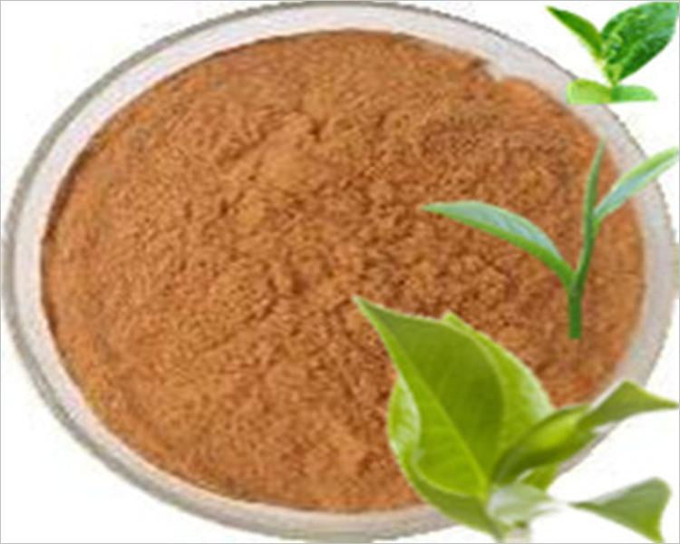 Green Tea Extract - Wholesalehealthmarket.com